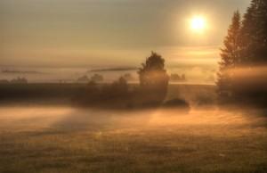 Herbststimmung – © VDNNorbert Schreiber – Nördlicher Oberpfälzer Wald