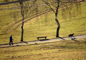 Klicken Sie auf das Bild des Tages im Fotoportal: Hund und Herrchen – © VDNJörg Willems - Rothaargebirge