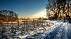 Klarheit eines Wintermorgens – ©VDNAndreas - Stromberg-Heuchelberg