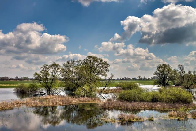 Klicken Sie auf das Bild des Tages im Fotoportal: Landschaftsspiegelung – © VDNPetra Küster - Barnim