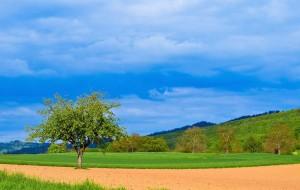 Klicken Sie auf das Bild des Tages im Fotoportal: Markgräfler Landschaft – © VDNA.Di Maggio - Südschwarzwald