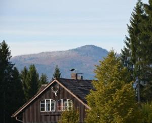 Menschliches gestaltendes Naturverständnis – © VDNChristine R. Sigl - Bayerischer Wald