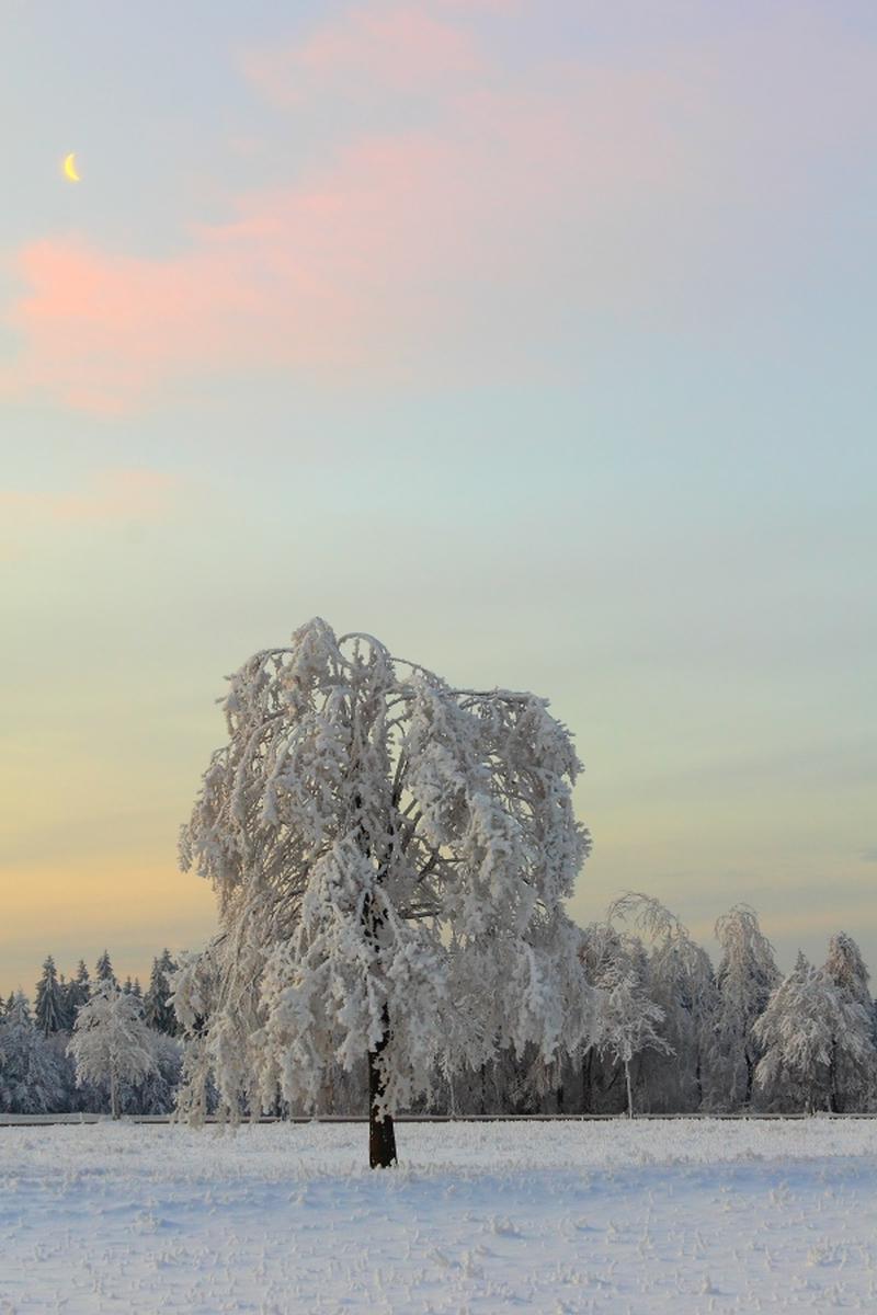 Klicken Sie auf das Bild des Tages im Fotoportal: Mondsichel,Schnee und Reif – © VDNbikender - Zittauer Gebirge