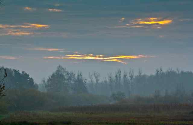 Klicken Sie auf das Bild des Tages im Fotoportal: Morgendämmerung – © VDNKuester - Am Stettiner Haff