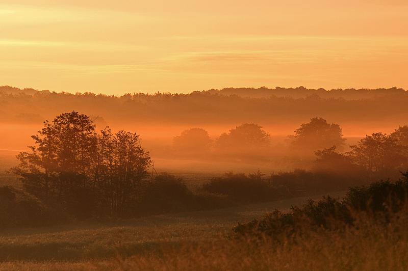 Morgenlicht – © VDNMatze - Stromberg-Heuchelberg
