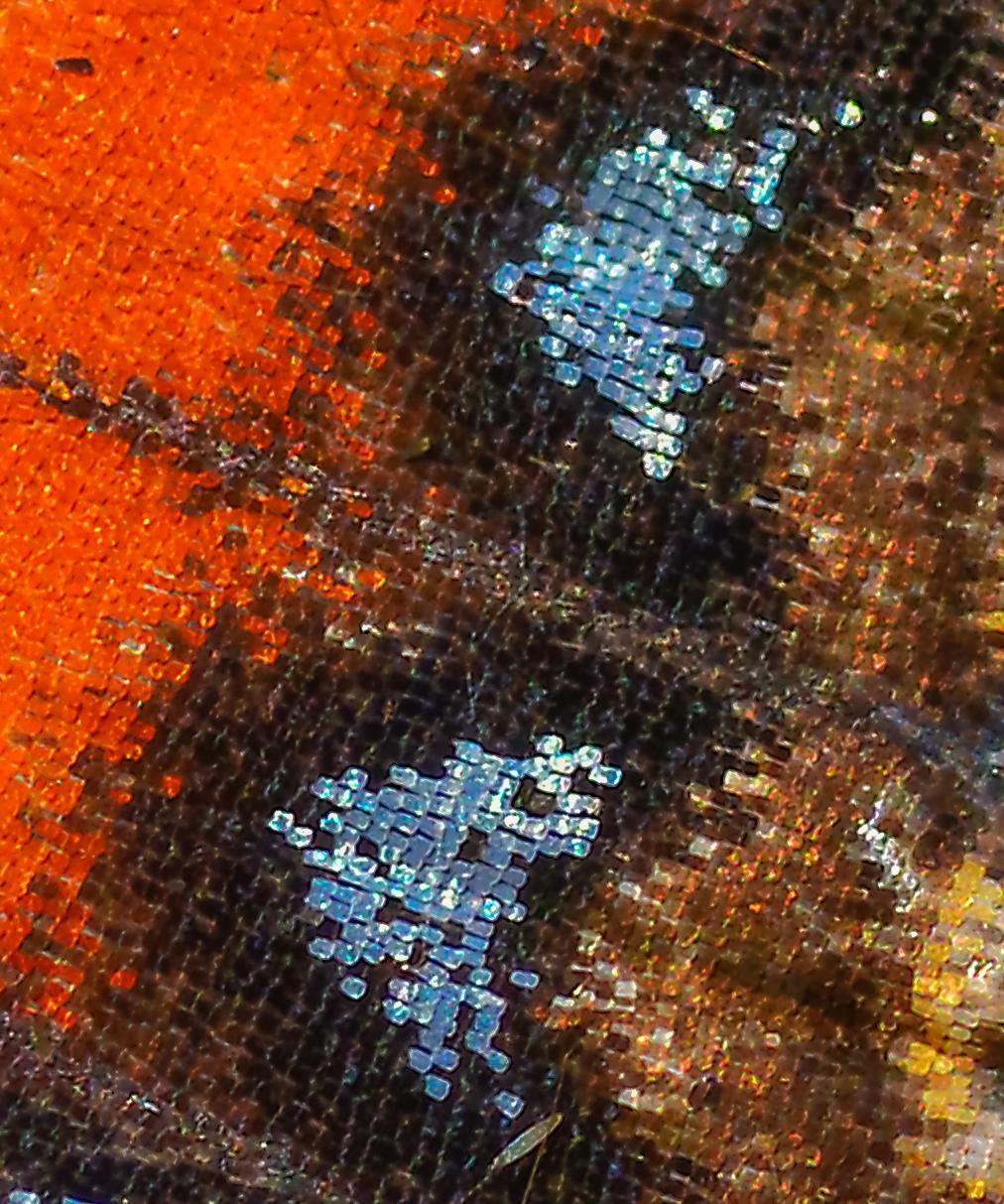 Mosaik.... – © VDNH.Schier - Wildeshauser Geest