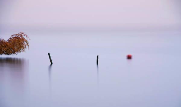 Klicken Sie auf das Bild des Tages im Fotoportal: Nebeltag – © VDNOpa - Steinhuder Meer