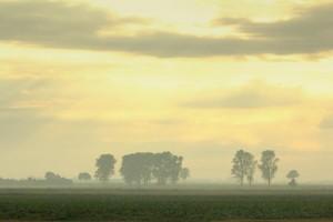 Pastell nach Regen – © VDN-Ulrike Sobick – Rheinland