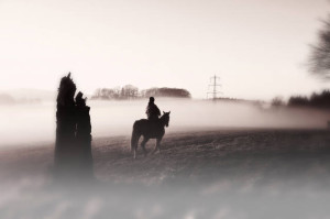 Klicken Sie auf das Bild des Tages im Fotoportal: Pferdefrau – © VDNOpa - Teutoburger Wald  Eggegebirge