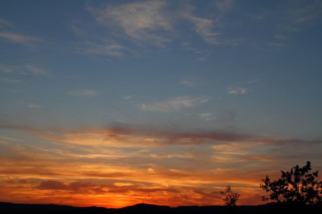 Klicken Sie auf das Bild des Tages im Fotoportal: Sommerabend – © VDNGünter Müller - Südeifel
