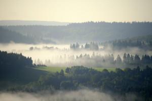 Klicken Sie auf das Bild des Tages im Fotoportal: Sommernebel – © VDNJörg Willems - Rothaargebirge