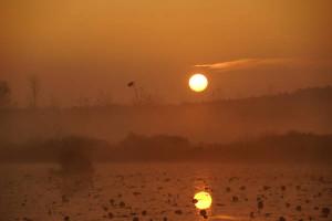 Klicken Sie auf das Bild des Tages im Fotoportal: Sonnenaufgang – © VDNI.Decker - Niederlausitzer Heidelandschaft
