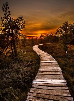 Sonnenuntergang im Moor – © VDNWerner - Bayerische Rhön