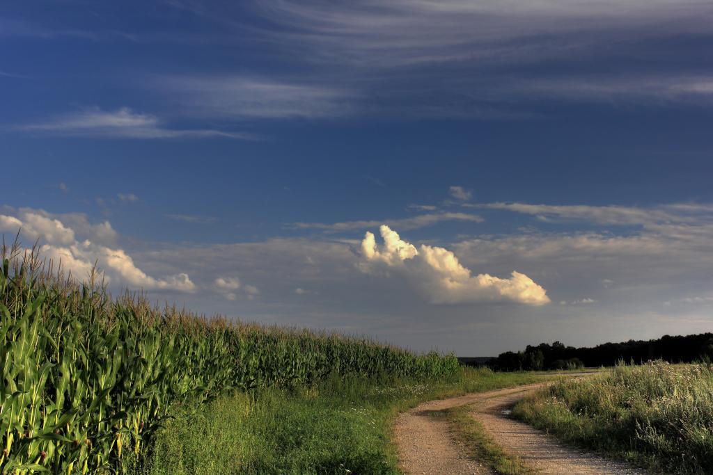 Sonntagswetter – © VDNwerner voss - Elbhöhen-Wendland