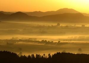 Versteckt im Nebel – © VDNS. Greß - Habichtswald