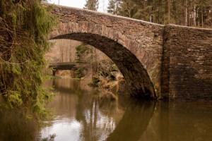 Klicken Sie auf das Bild des Tages im Fotoportal: Viadukt – © VDNGerhard Glatz - Erzgebirge  Vogtland