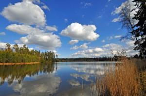 Klicken Sie auf das Bild des Tages im Fotoportal: Vorfrühling in den Waldnaabauen – © VDNNorbert Schreiber - Nördlicher Oberpfälzer Wald