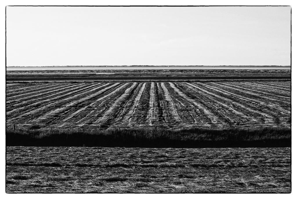 Weite – © VDNMilkus - Holsteinische Schweiz