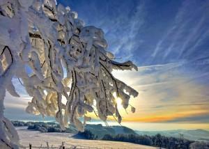 Klicken Sie auf das Bild des Tages im Fotoportal: Wetteränderung in Sicht – © VDNFUHO – Hessische Rhön