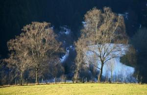 Klicken Sie auf das Bild des Tages im Fotoportal: Winterblick – © VDNJörg Willems - Rothaargebirge