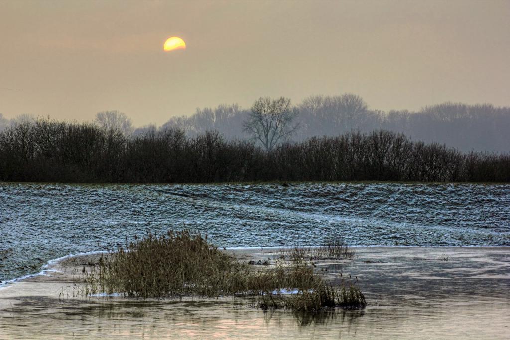 Klicken Sie auf das Bild des Tages im Fotoportal: Winterliches 1 – © VDNwerner voss - Elbhöhen-Wendland