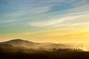 Klicken Sie auf das Bild des Tages im Fotoportal: am Abend – © VDNGudrun Ruf - Südschwarzwald