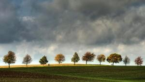 der radfahrer-(c) VDN-blum / Lauenburgische Seen