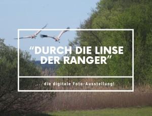 © Naturpark Dahme-Heideseen