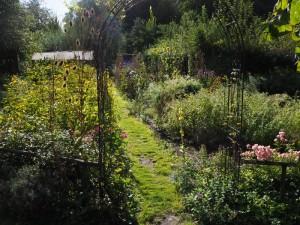 Biogarten_Schmetterlingsgarten02__800x600_