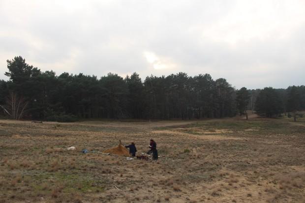 """Bodenprofile 1 620x414 Studie """"Bodenkundliche Fachbegleitung für das BIZ des Naturparks Dahme Heideseen"""""""