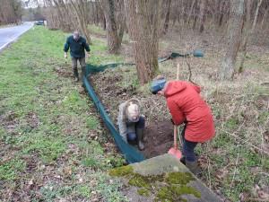 DSCN3874 300x225 Freies Geleit für Molch und Unke: Krötenzaun zwischen Limsdorf und Ahrensdorf ist aufgebaut
