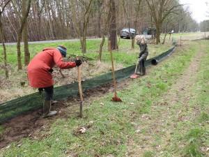 DSCN3886 300x225 Freies Geleit für Molch und Unke: Krötenzaun zwischen Limsdorf und Ahrensdorf ist aufgebaut