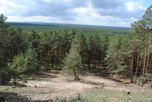 Nationales Naturerbe in Streganz