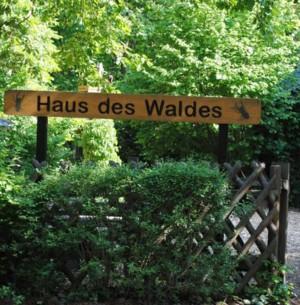 Eingang zum Haus des Waldes (Foto: Sonnenberg)