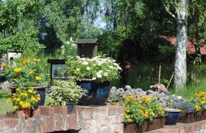 Impressionen Biogarten (© Bildarchiv NABU Dahmeland)