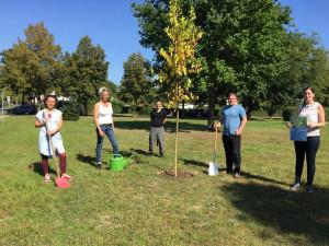 Maulbeerbaumpflanzung mit Sebastian Neitsch & Manja Piotrowski (FairWurzeln e.V.), Steffen Reichelt (Ortsvorsteher Kolberg), Team-Mitglieder Naturpark Dahme-Heideseen (© Teresa Zeuner)