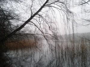 Am Oderiner See (Foto: Hans Sonnenberg)