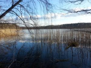 Vorfrühling am Oderiner See (Foto: Sonnenberg)