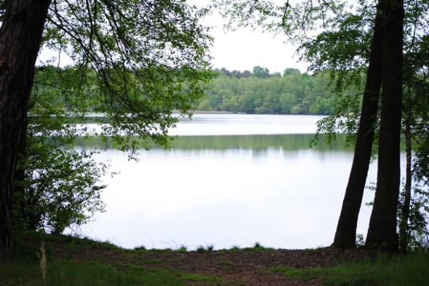 Roßkardtsee web 620x414 Wandertipp zwischen den Jahren: Rund um die Heideseen von Groß Köris