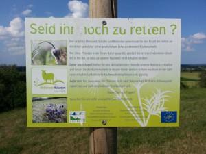Infotafel vom Life Projekt Wetteraue Hutungen