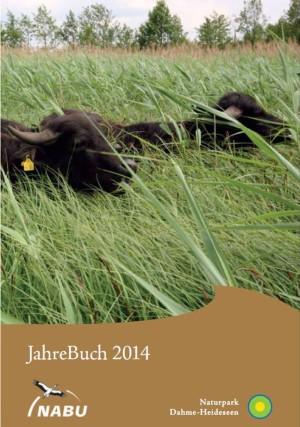 Wasserbüffel im Naturschutzgebiet Töpchiner Seen (Foto: Holger Rößling)