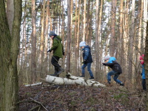 Wald erleben - Theresa Schwalbe