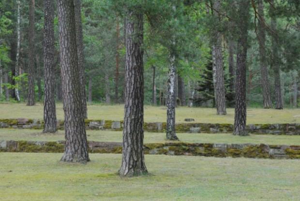 Waldfriedhof Halbe Kiefern 620x416 Tag des offenen Denkmals in Halbe am Sonntag 11. September 2016