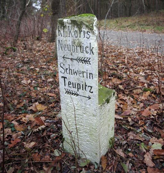 Wustrickwiesen stein klein Waldsteine im Dahmeland
