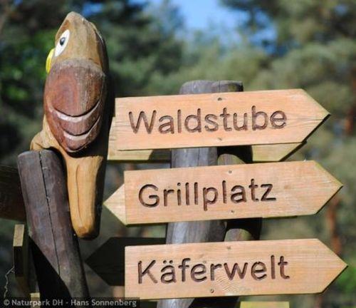 csm 1526007927 item 379845 pic 2 contentwidth b902bef5ab Unterwegs in der Hirschkäferwelt   Ranger ErlebnisTour