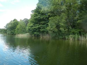 Heimische Seen (© Naturpark Dahme-Heidessen)