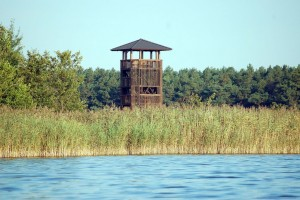 Aussichtsturm am Selchower See - zum Turm führt der neue Naturlehrpfad (BIZ Burg Storkow)