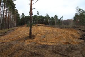 Freischieben von Sandrasenflächen am Roßkardsee (Foto: H. Rößling)