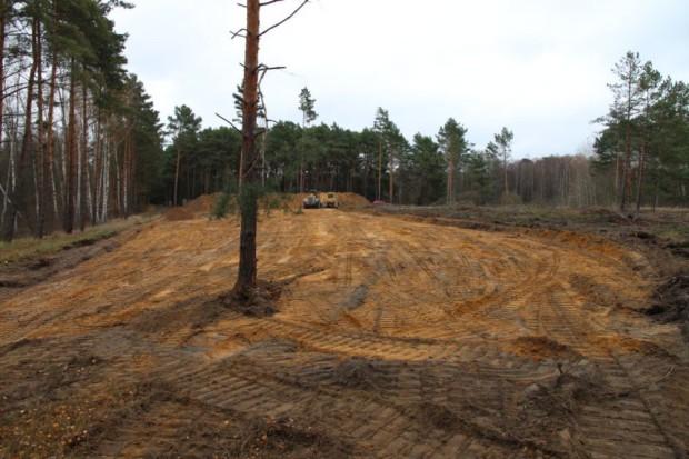 csm NPDH Sandrasen entwickeln Koeris Roessling2015 6e5703cac5 620x413 Neue Sandrasen entstehen