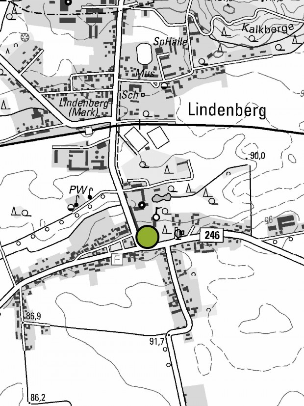 lindenberg linde 620x827 Zarter Frühling unter den Sommerlinden in Lindenberg